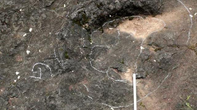 Dinosaurio chino: Descubren pisadas de 100 millones de antigüedad