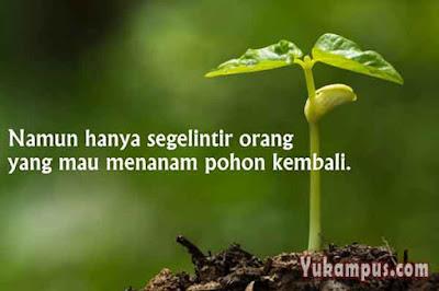 iklan layanan masyarakat menanam pohon