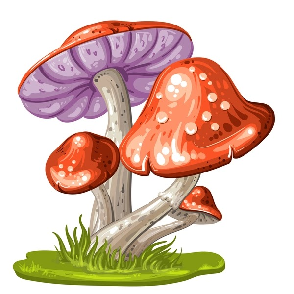 What Does It Mean to See Mushrooms in a Dream