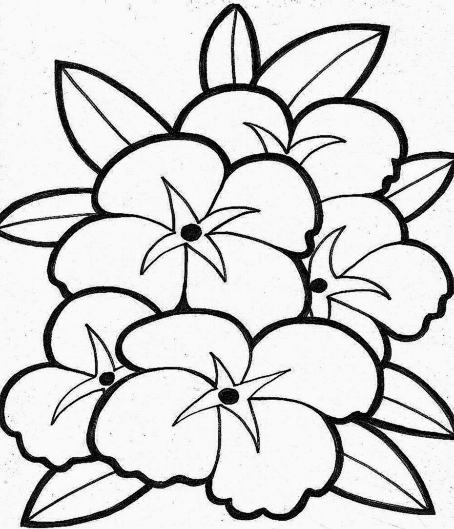 print out coloring pages of flowers laura williams