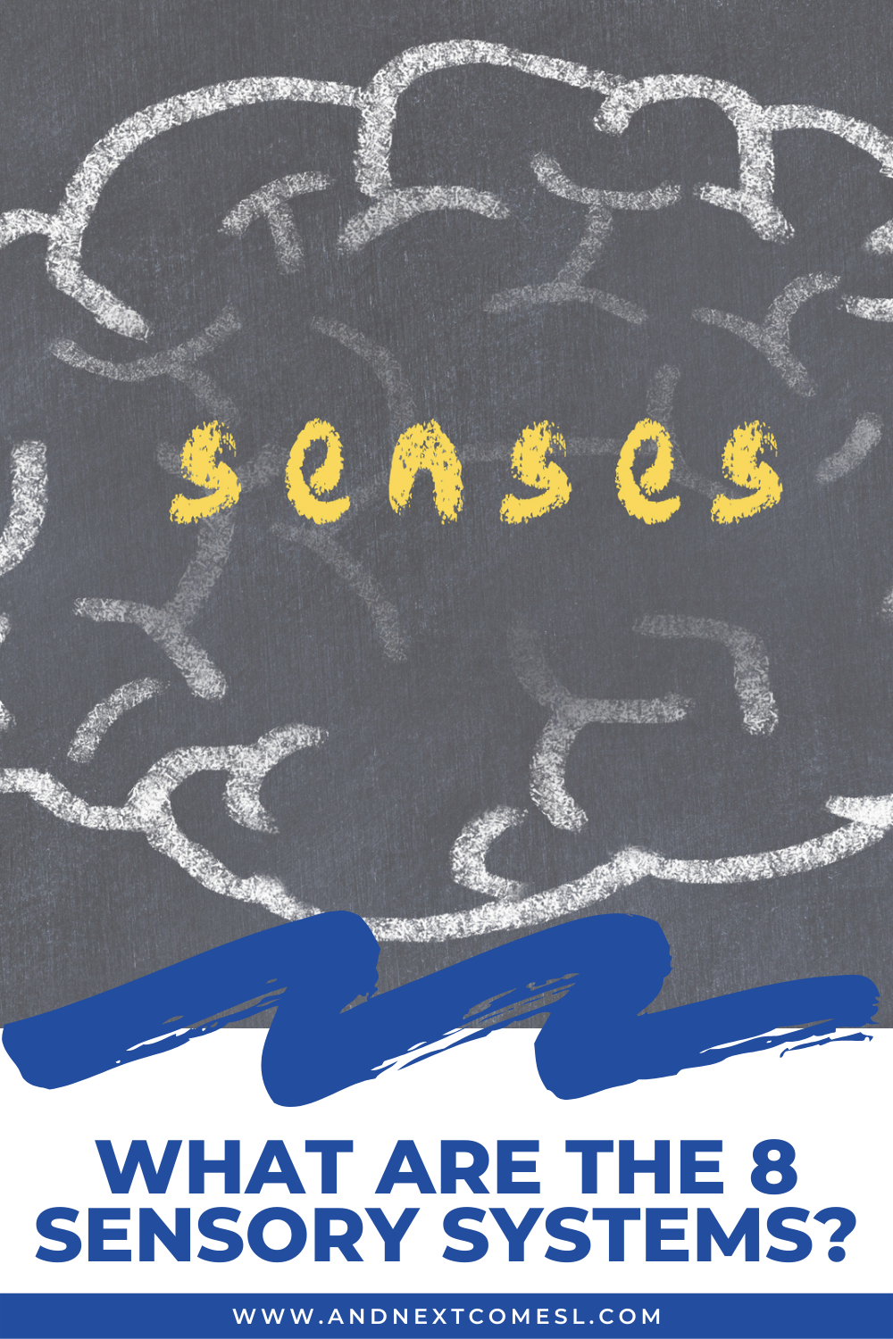 What are the 8 sensory systems? Click to learn more about the 8 senses