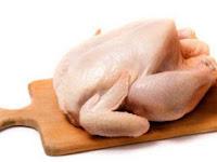 Peluang Usaha Ternak Ayam Potong Skala Rumahan