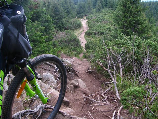 спуск на велосипеде с говерлы