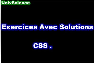 Exercices Avec Solutions CSS PDF.