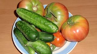огород помидоры выращивание