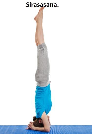 சிரசாசனம் - Sirasasanam - Headstand yoga.