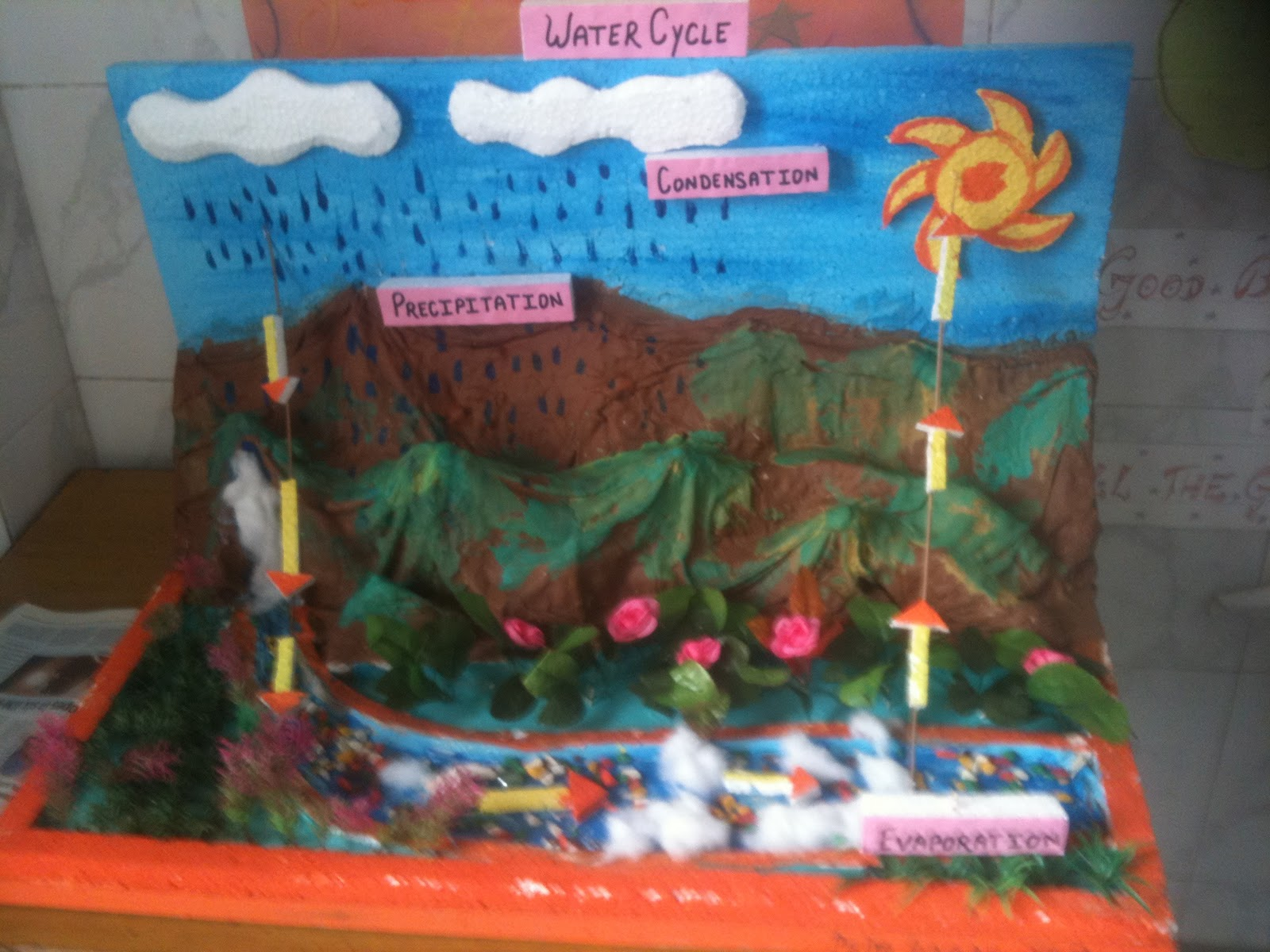 Bbps Bal Bharati Public School Rohini Water Cycle By