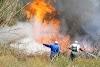 Ημαθία: Πυρκαγιά σε καλαμιές απείλησε τον Α.Σ. Venus, χωράφια και επιχειρήσεις (φώτο - βίντεο)