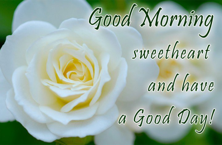 Sweet Good Morning Messages for Girlfriend - Apihyayan Blog