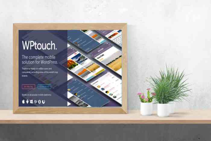 Download WPTouch Pro v4.3.34