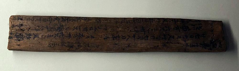 新しく梶子遺跡から出土した稲の収穫量の記された木簡には上下に一列に揃った孔が穿たれており側部は墨書される程に厚みを有している(2018年6月8日撮影)