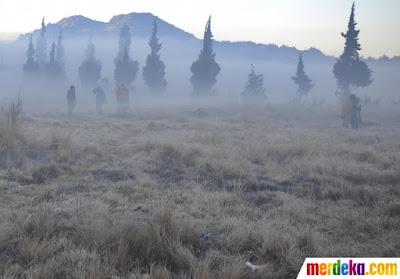 Wisatawan berjalan di atas lapangan rumput yang diselimuti es tipis di kawasan Dieng