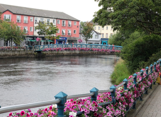 Flowers in Sligo Town
