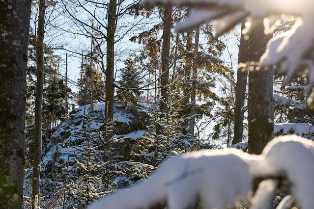 Rundweg Felswandergebiet  Wandern im Nationalpark Bayerischer Wald 09