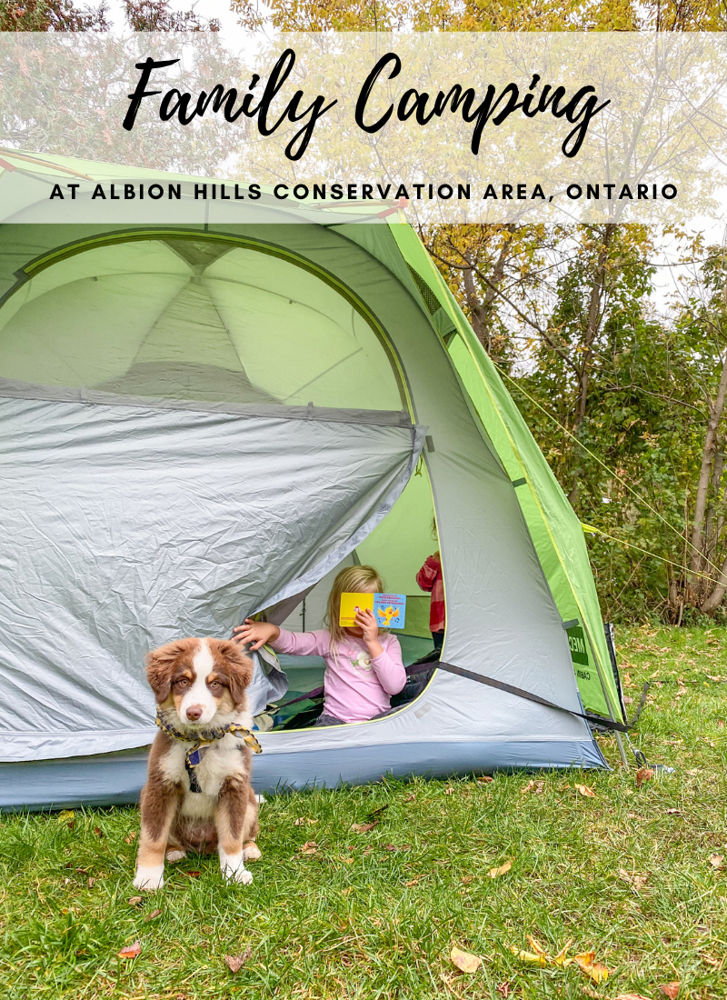 Family Camping at Albion Hills Conservation Area