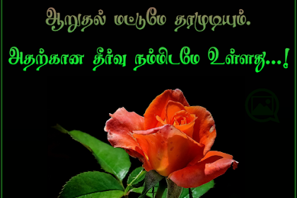 நம் பிரச்சனைக்கு மற்றவர்களால்... Problem Tamil Quote With Image...