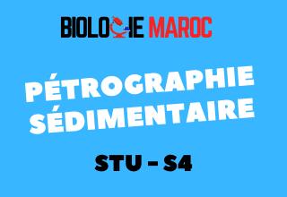 Cours Pétrographie sédimentaire S4 STU PDF