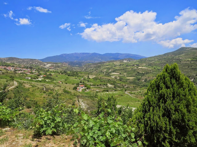 Cyprus Road Trip: View from Linos Winery in the wine villages of Troodos