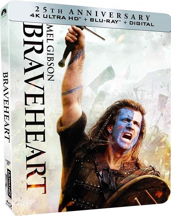Braveheart 1995 x264 720p BluRay Dual Audio English Hindi GOPI SAHI