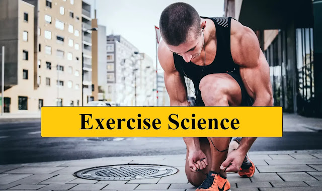 Endocrine System Responses to Exercise