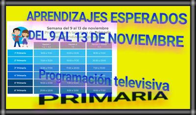 APRENDIZAJES ESPERADOS-DEL 9 AL 13 DE NOVIEMBRE-PRIMARIA-PROGRAMACIÓN TELEVISIVA