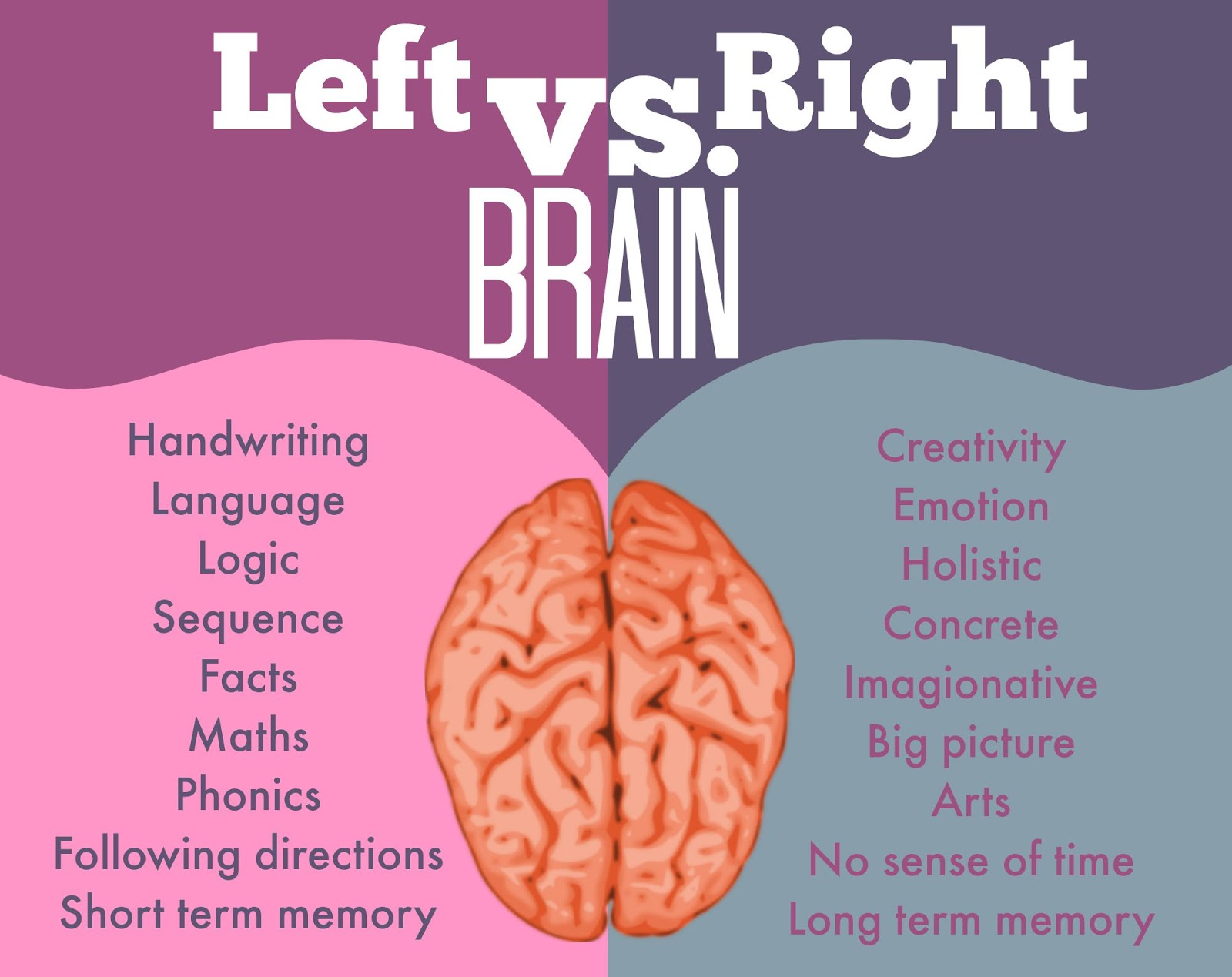 Brain Hemispheres & Temperament Types: From Dualistic ...  Right Side Brain Parts