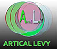 articlelevy.com is the best online income way and information system