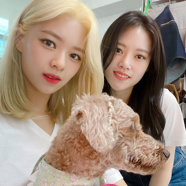 Twice Jeongyeon Family Pictures