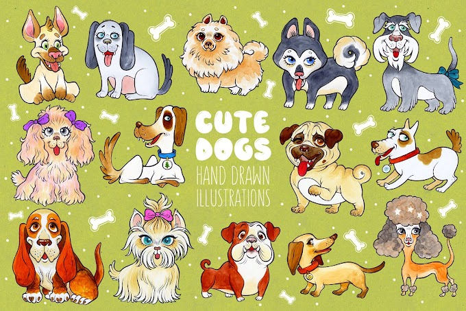 Cute dogs Collections