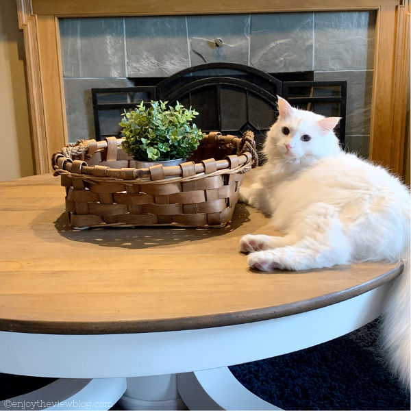 round coffee table with a white cat laying on it in front of a fireplace