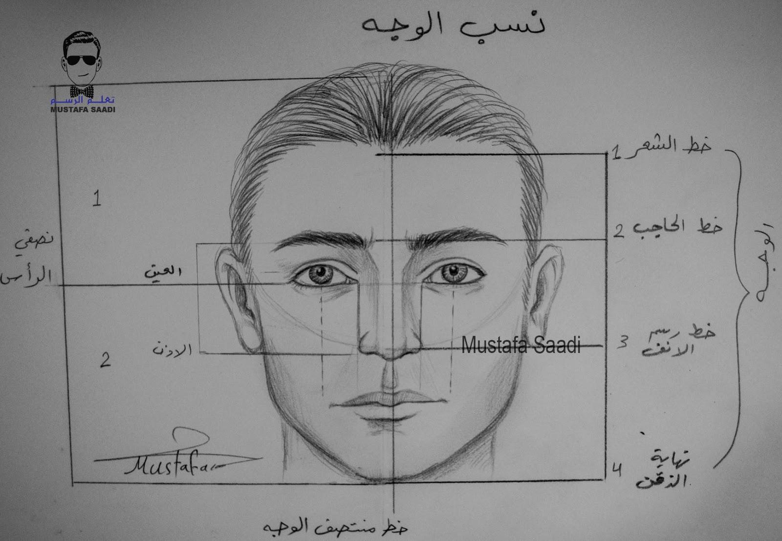 تعلم رسم نسب الوجه للرجل بالرصاص مع الخطوات للمبتدئين تعلم الرسم