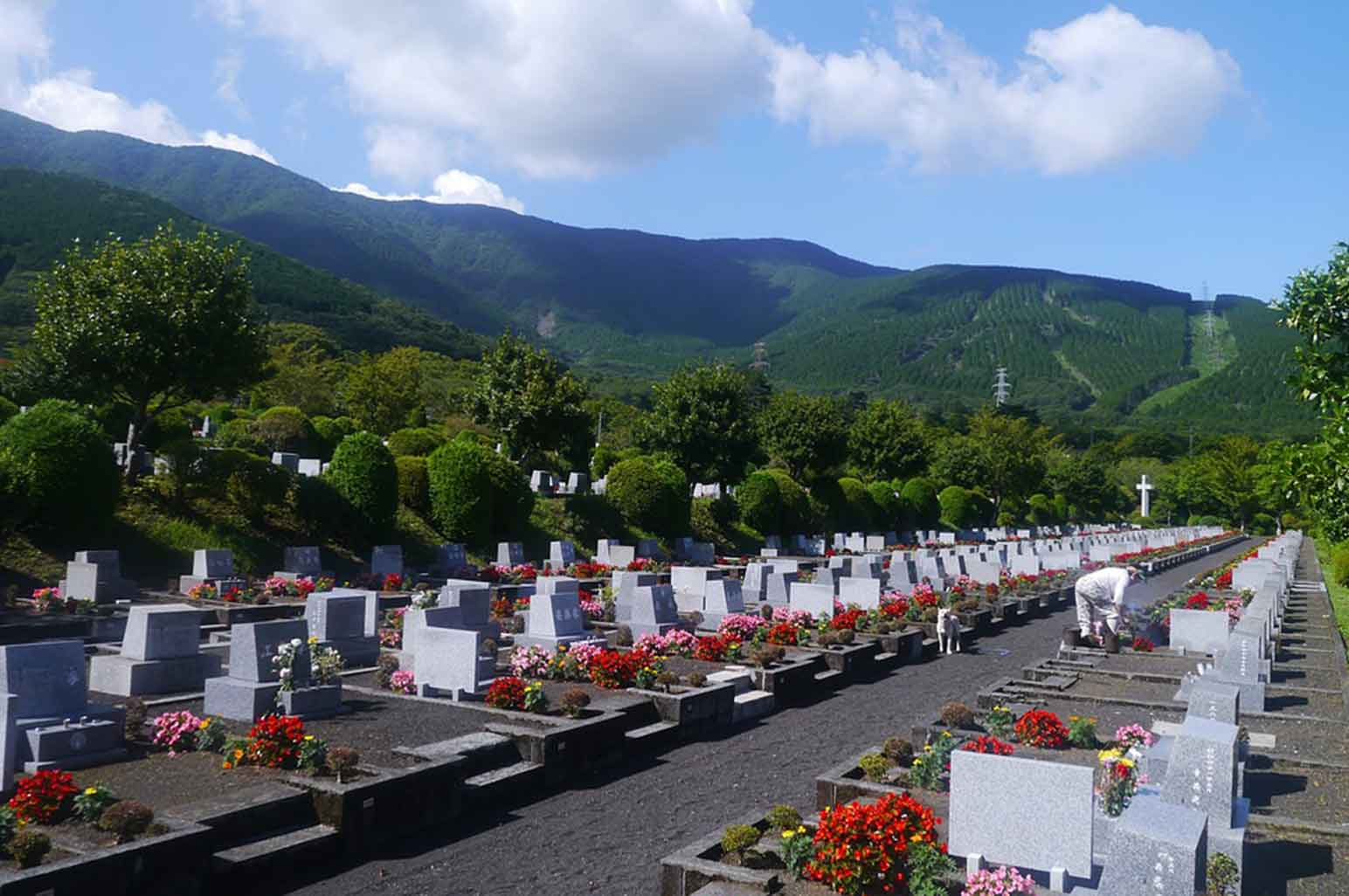 Facts On Cremation That You Should Be Aware Of