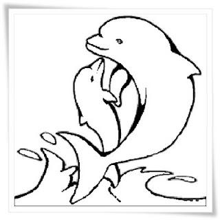 ausmalbilder delfine kostenlos