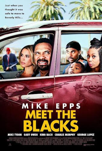 Meet the Blacks (BRRip Dual Latino / Ingles) (2016)