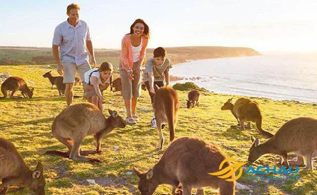 Thủ tục đầy đủ xin visa thăm thân Úc