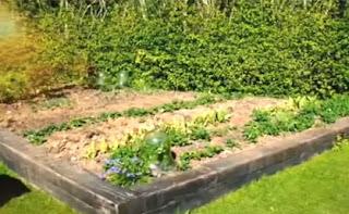 Alan Titchmarsh vegetable garden
