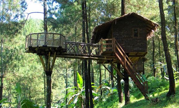 Banten Forest House is tourist destination in Banten