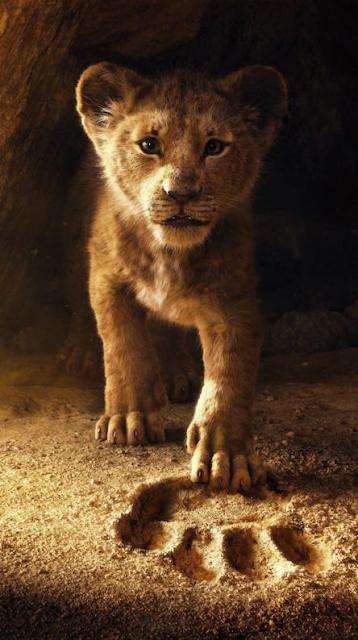Lion King Phone Wallpapers Cool Wallpapers Heroscreencc