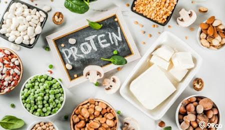 Fungsi Protein Itu Apa