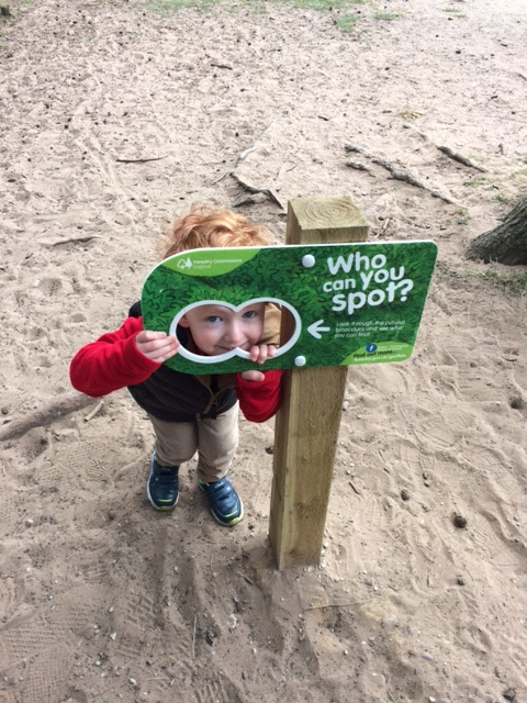 Little boy peeking through a sign that says 'who can you spot?'