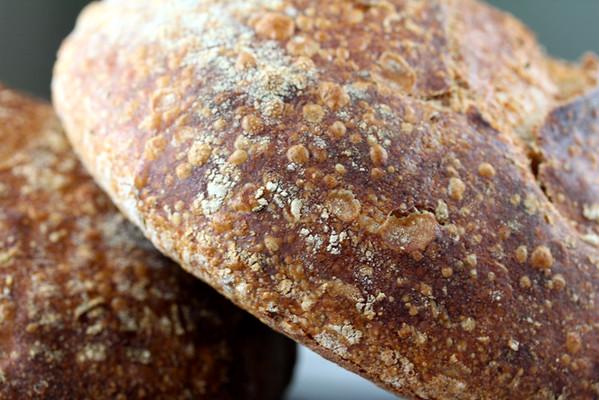 Rosemary bread close up
