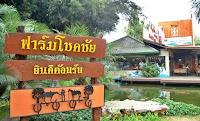 Chok Chai Farm - Paket Tour 5H4M Bangkok Khao Yai