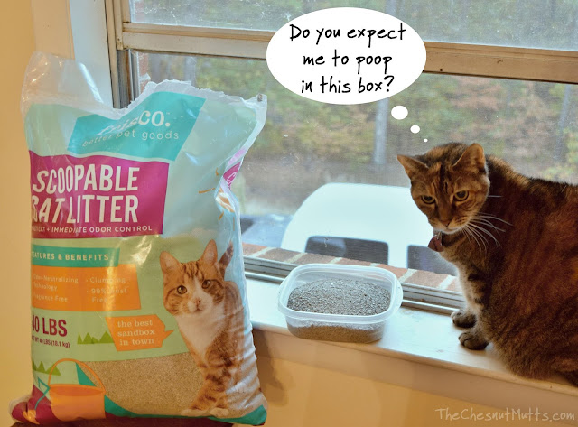 Mini Review: Frisco Mult-Cat Clumping Cat Litter