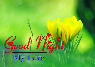 Latest Beautiful Good Night Wallpaper Free Download %2B5