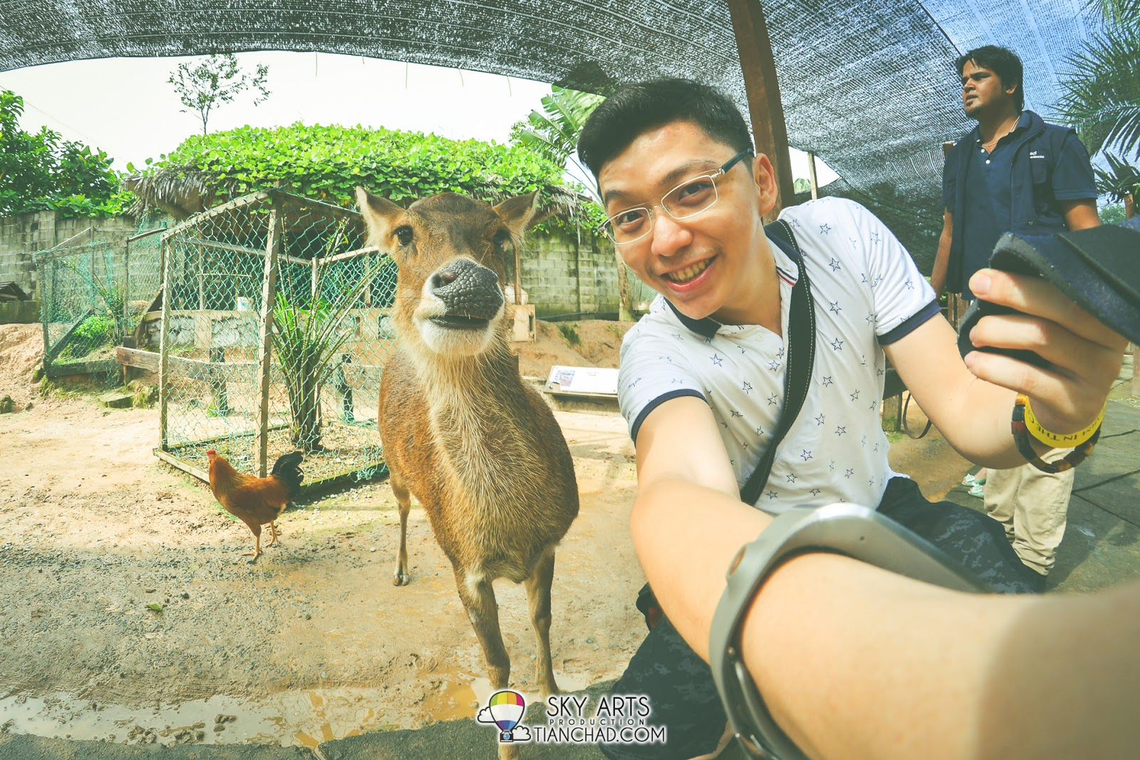 A deer that was reluctant to take a selfie with me...