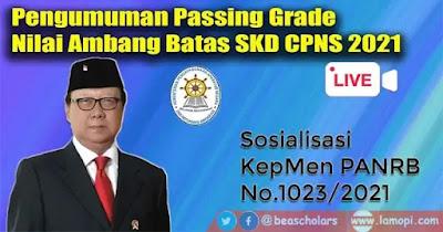 Passing Grade SKD CPNS 2021