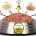 Alimentos para perros pitbull cachorros