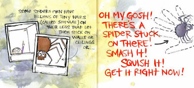 bethany barton illustrations spiders