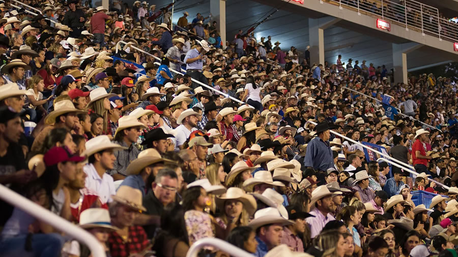 Descumprimento das Normas Regulamentadoras ameaçou Festa do Peão de Barretos