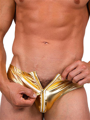 Pistol-Pete-Metallica-Zip-Front-Brief-Underwear-Gold-Gayrado-Online-Shop